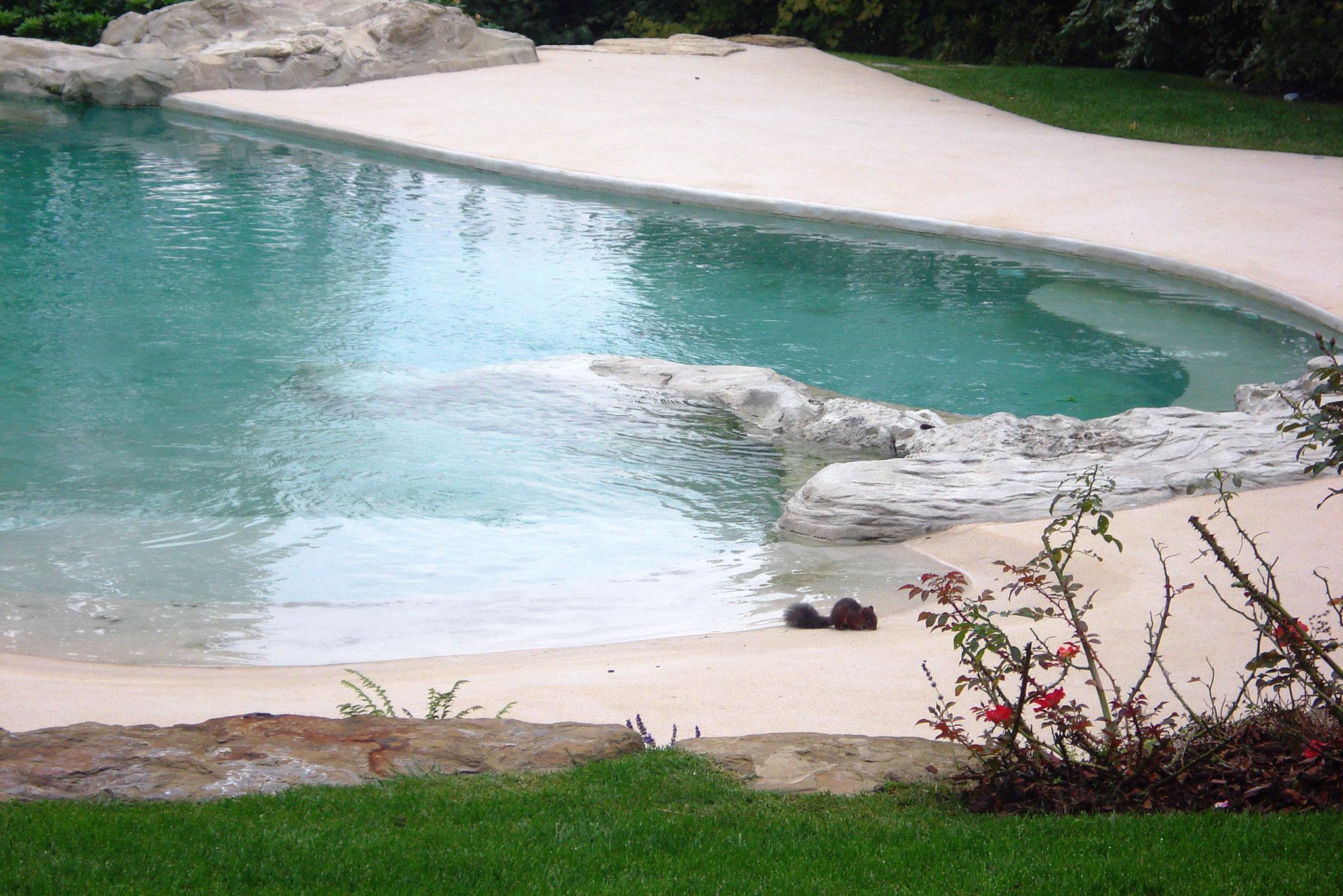 Archiverde-portfolio-piscine-6